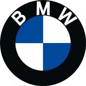 BMW 3 E30 Вітрове без шовкографії SG